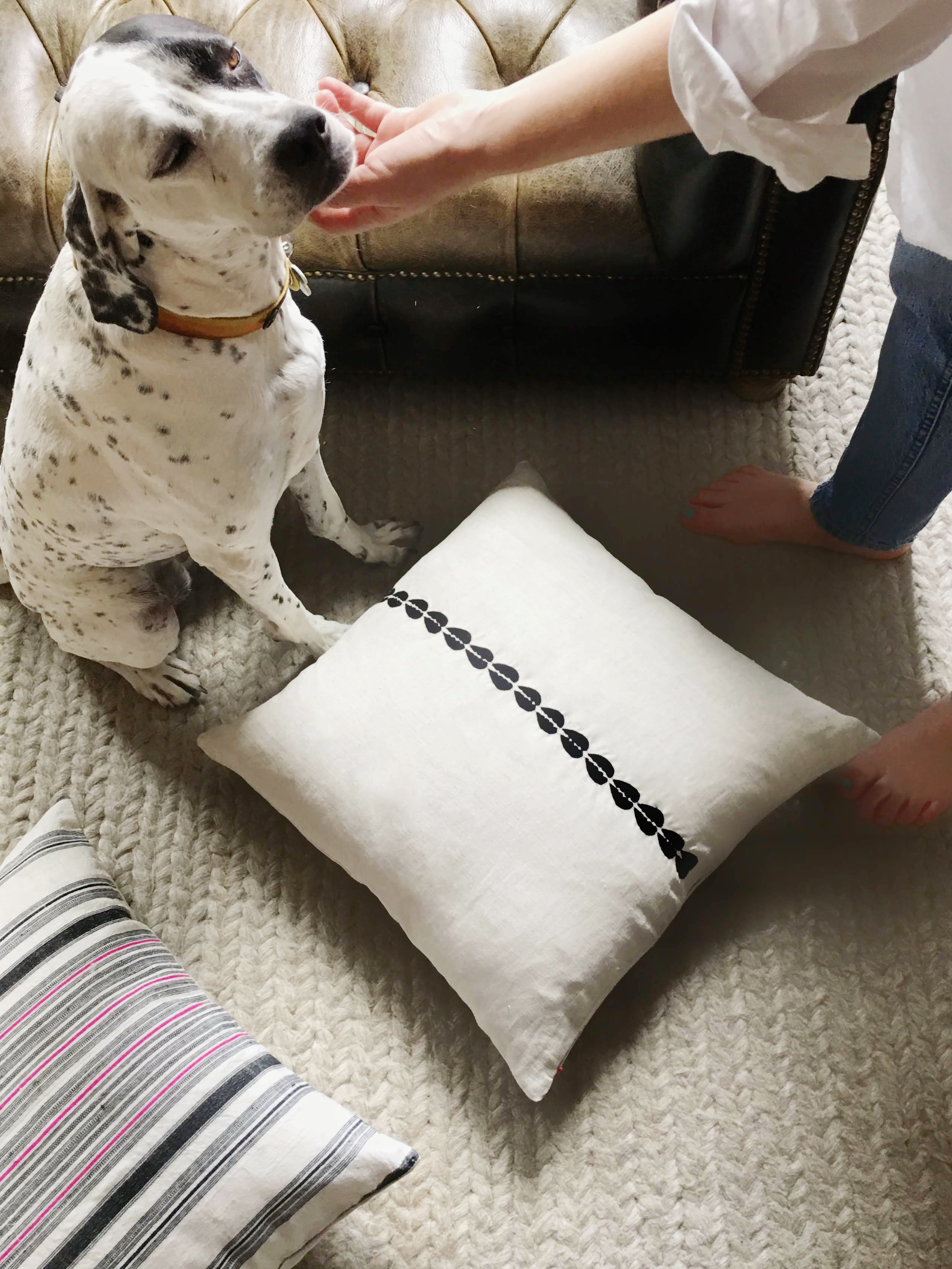 dog proof throw pillows online