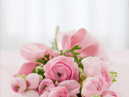 باقة ورد جميلة باقات ورد صباحية جميلة جدا باقة ورد كبيرة Zina Blog Rose Flower Photos Pink Flowers Background Pink Rose Flower