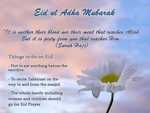 Happy eid mubarak wishes messages for friends others pinterest happy eid mubarak wishes messages for friends m4hsunfo