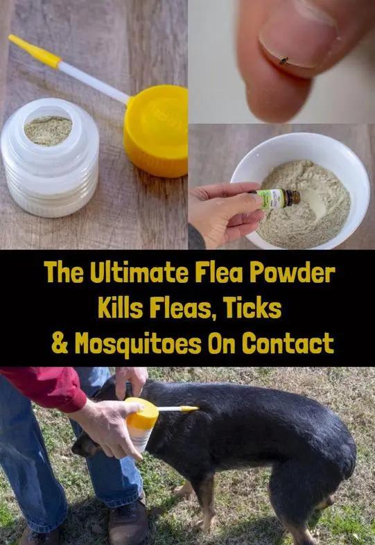 The Ultimate Flea Powder Kills Fleas, Ticks, Mosquitoes On