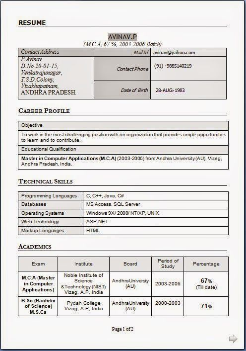 hacer curriculum Sample Template Example ofExcellent CV / Resume - Cv Example