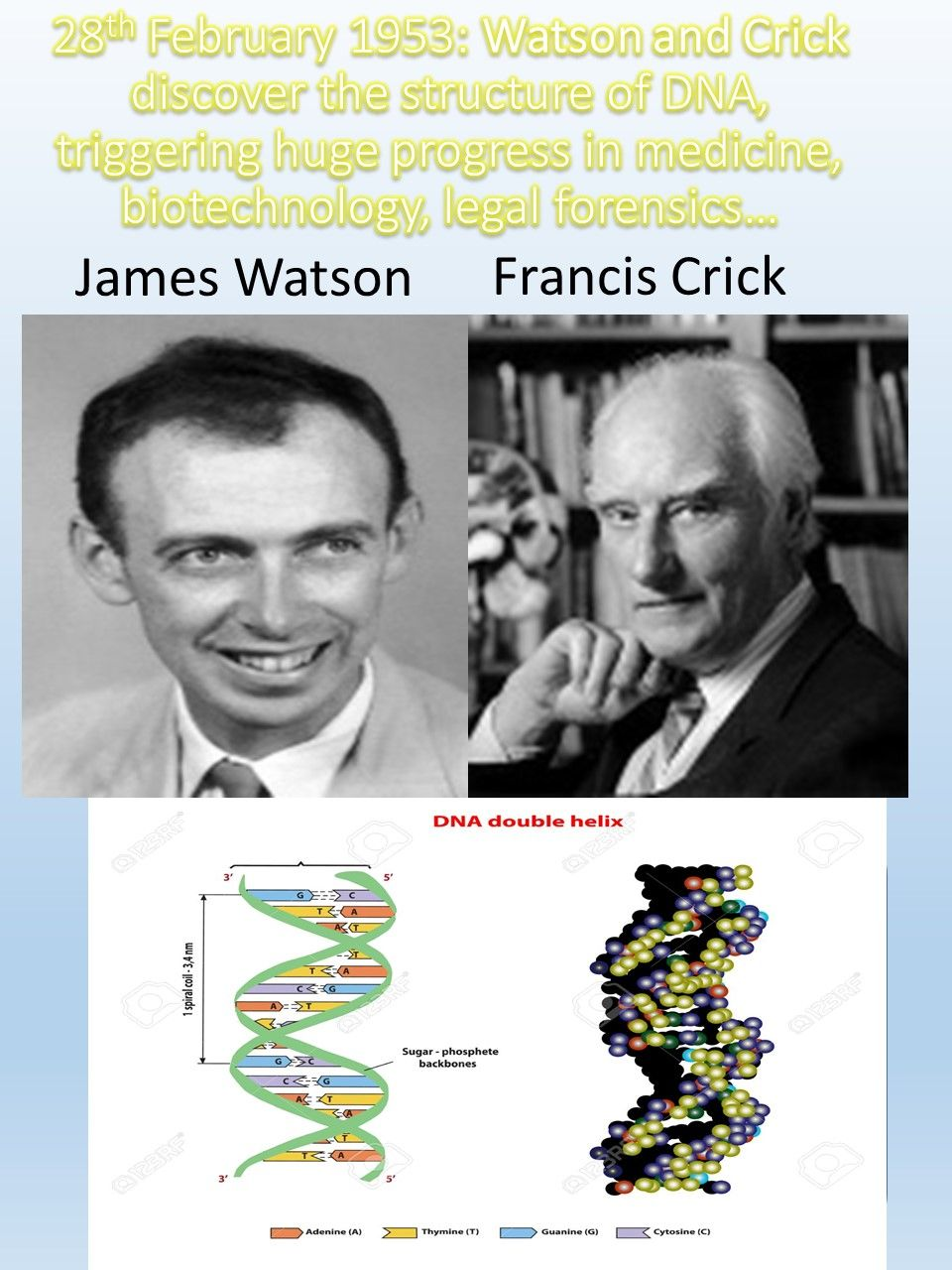 Discovery Of Dna Structure And Function By Watson And Crick Dna Dna Treat Psoriasis Dna Test