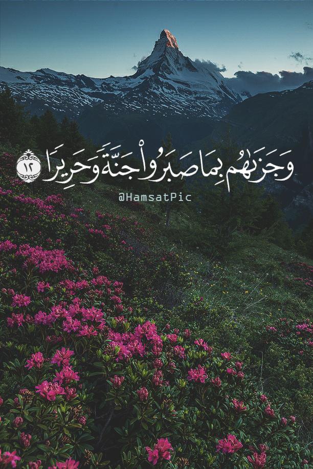 هتان Quran Quotes Love Quran Verses Quran Quotes