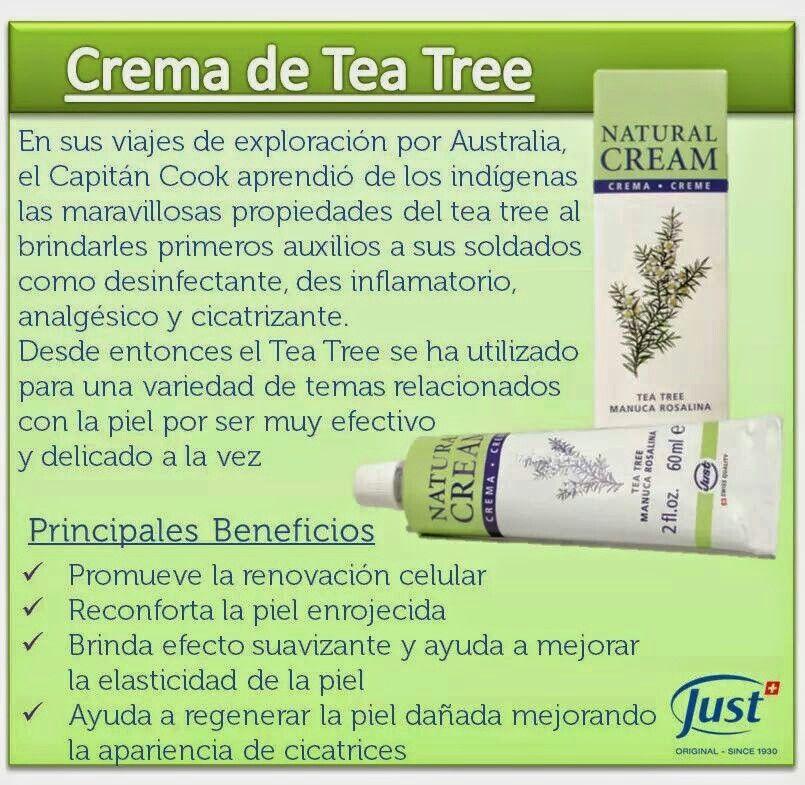 Tea tree beneficios para la piel just
