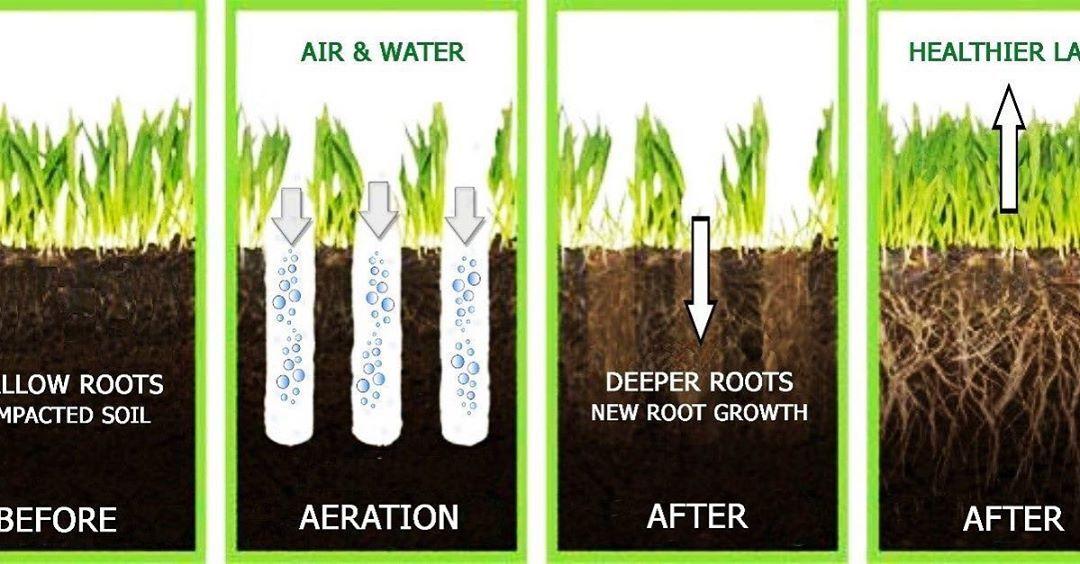 What does aeration do?  Now is the time start your lawn renovation.