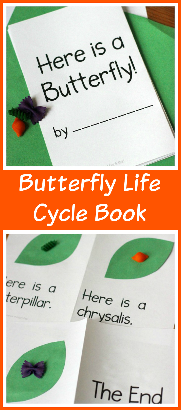 Butterfly Life Cycle Printable Book For Preschool And Kindergarten