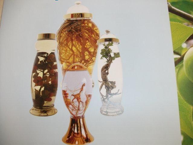 1 số mẫu bình ngâm rượu sâm thủy tinh Hàn Quốc đẹp . 0984 957 602
