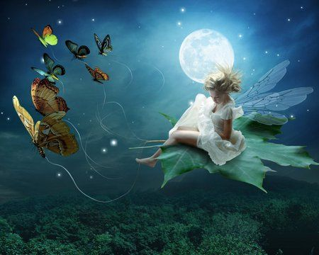Moonlit Fairy - beautiful, butterflies, fairy, forest, leaf, moonlight, sleigh, surreal