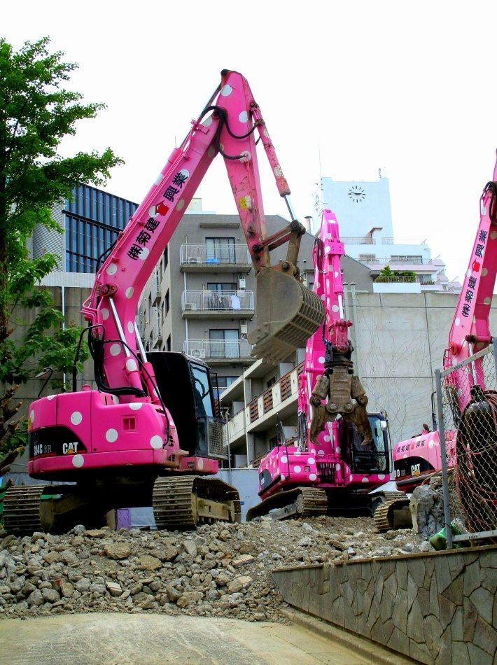 Pink Polka Dot Bobcats, Japan