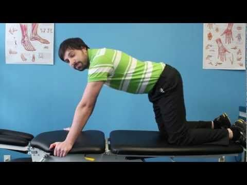 Preventing Back Pain Doggystyle - Ace Physiotherapy Toronto - http://physiotherapyhq.net/preventing-back-pain-doggystyle-ace-physiotherapy-toronto/