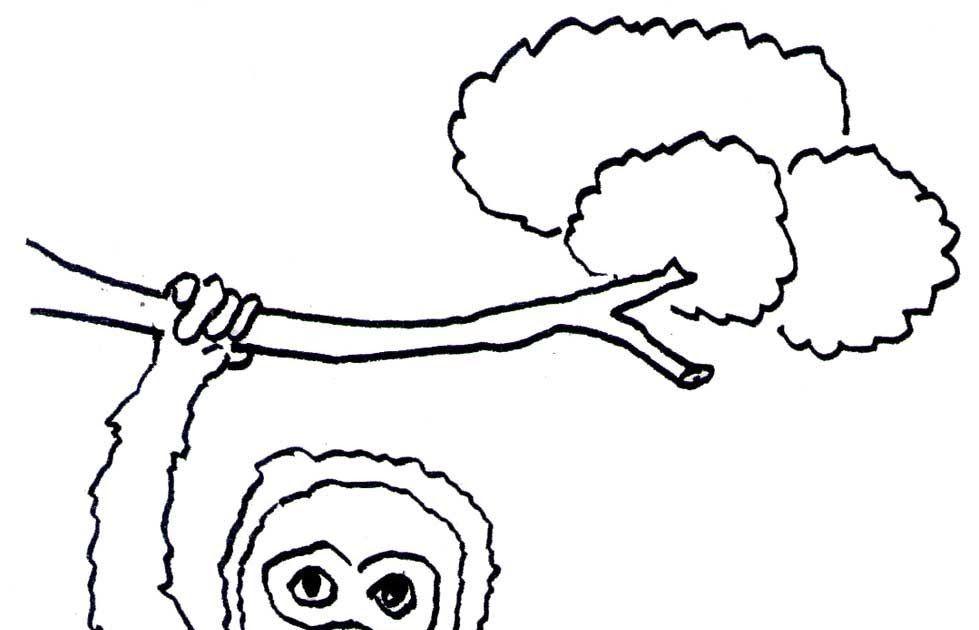 Download Gambar Mewarnai Hewan Kali Ini Obatrindu Akan Membagikan Kepada Anda Beberapa Gambar Tentang Sketsa Hewan Yang Berada Di S Gambar Hewan Buku Mewarnai