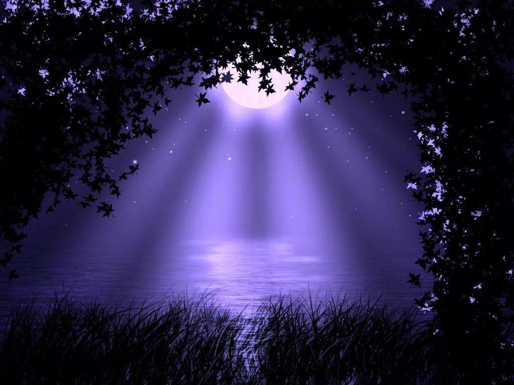 лунная ночь в саду картинки