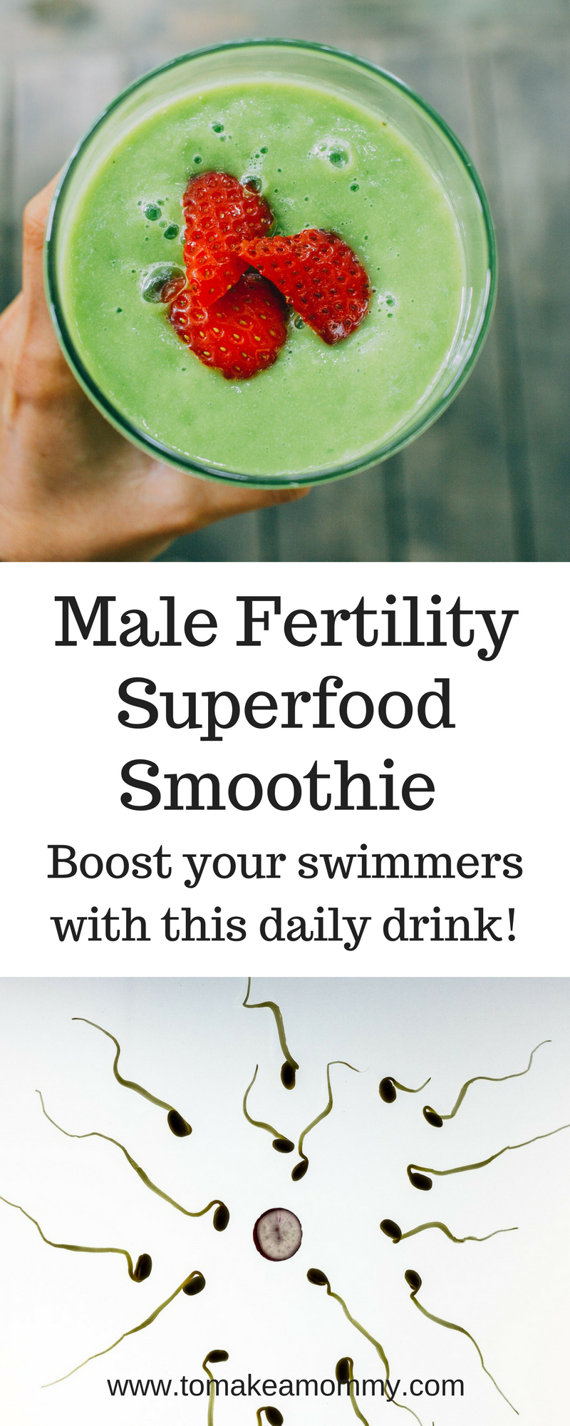 Ultimate Male Fertility Smoothie