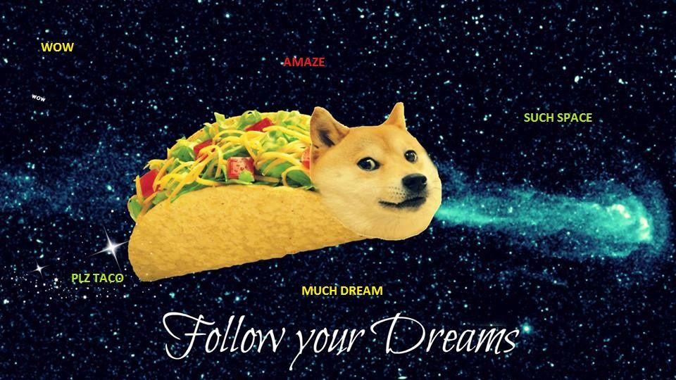 100 Shibe Doge Tumblr Doge Meme Doge Funny Memes