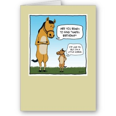 little horse hilarious Funniest Birthday Cards – Email Birthday Cards Funny
