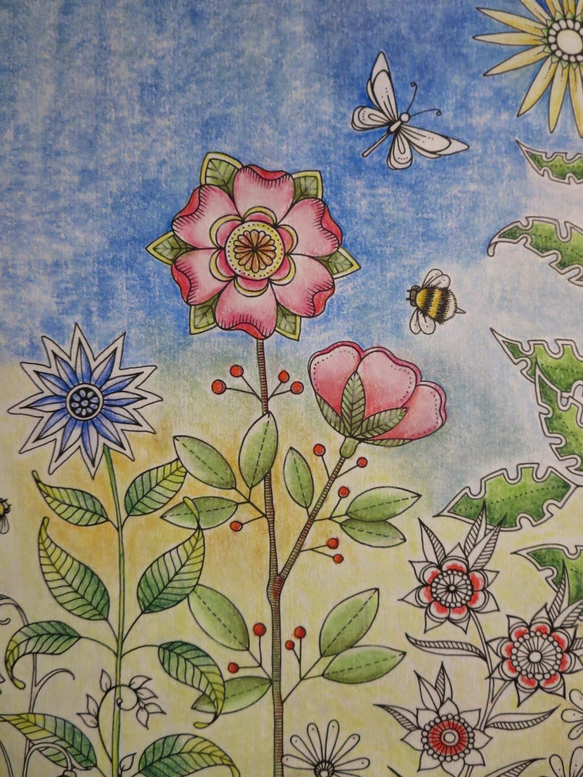 Secret garden coloring book website - Passion For Pencils My Secret Garden Colouring Book Part 6 Testing Different Brands And