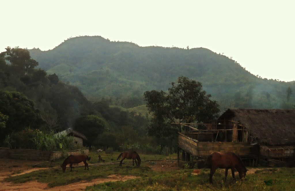 Jaruchori para- Murong tribal village