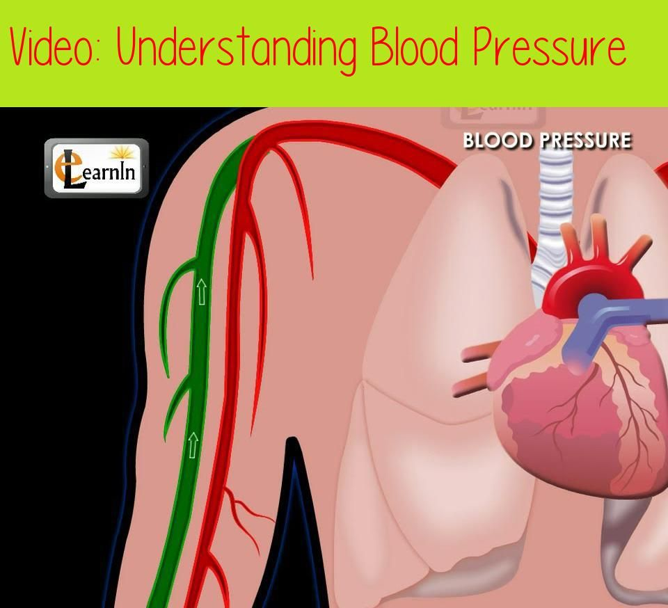 Understanding Blood Pressure Human Anatomy And Physiology Video 3d