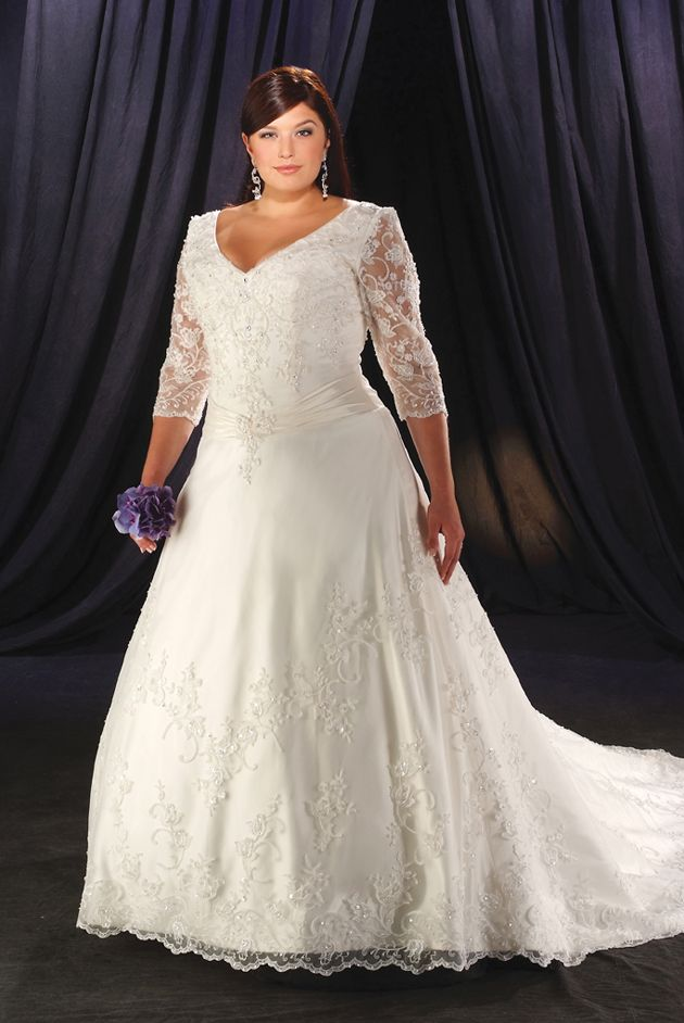attractive chubby lace long sleeves v-neck applique sweep length