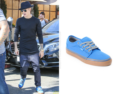 Vans Chukka Low Shoes in Blue Canvas