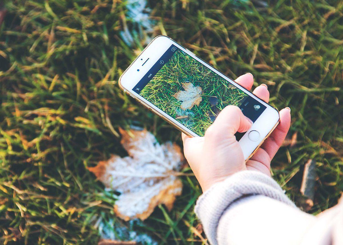 [IT열쇳말] HEIF(고효율 이미지 파일 형식) Modificare foto, Instagram, Foto