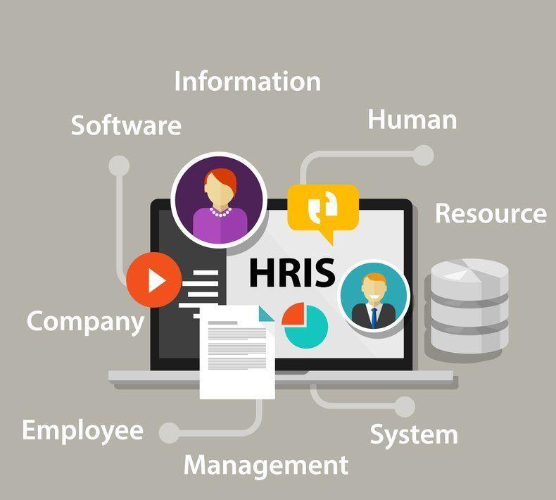 Langkah Dan Strategi Untuk Melakukan Pengembangan Aplikasi Hris Aplikasi Manusia Teknologi Informasi