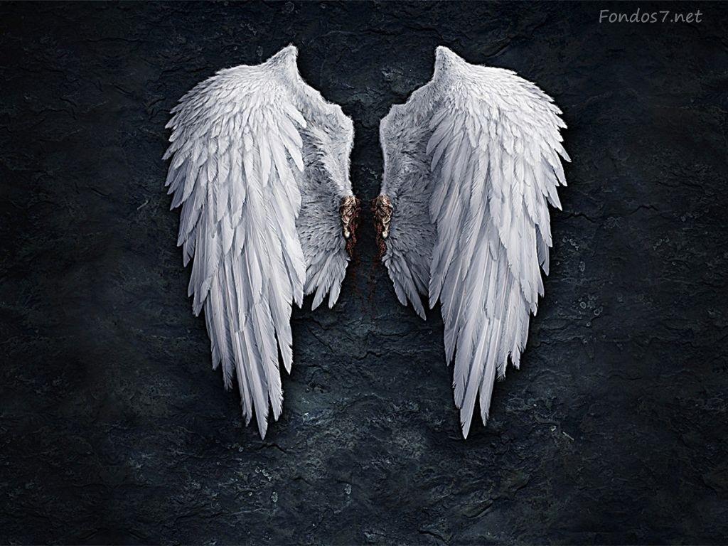 ღ Alas Angel ღ Angels Wings Wings Wallpaper Angel