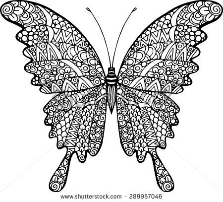 Vector Doodle Abstract Outline Decorative Butterfly Illustration Schmetterling Illustration Schmetterling Ausmalen Schmetterlingszeichnung