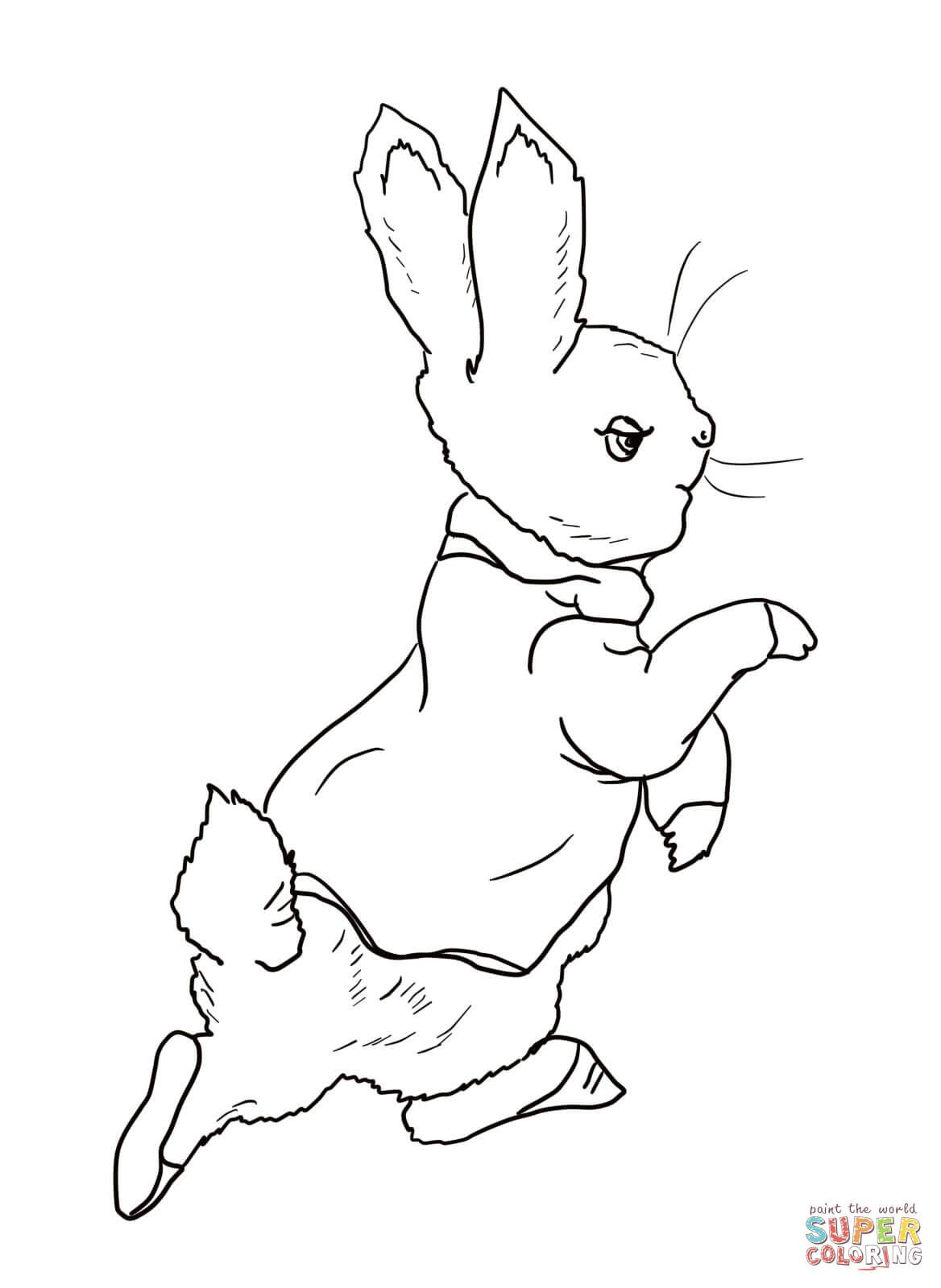 Peter Rabbit Is Going Into The Garden Coloring Page From Peter Rabbit Category Select From 2 Bunny Coloring Pages Easter Bunny Colouring Animal Coloring Pages