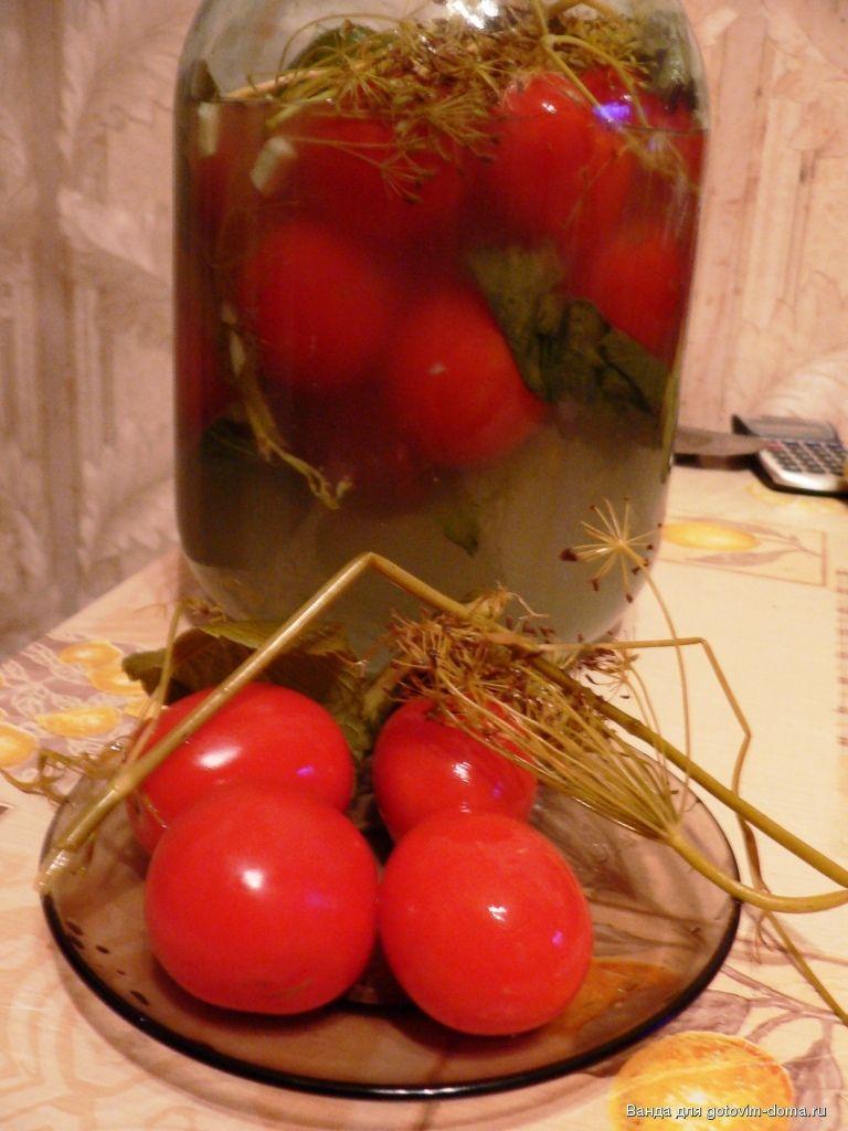 засолка помидоры холодным способом
