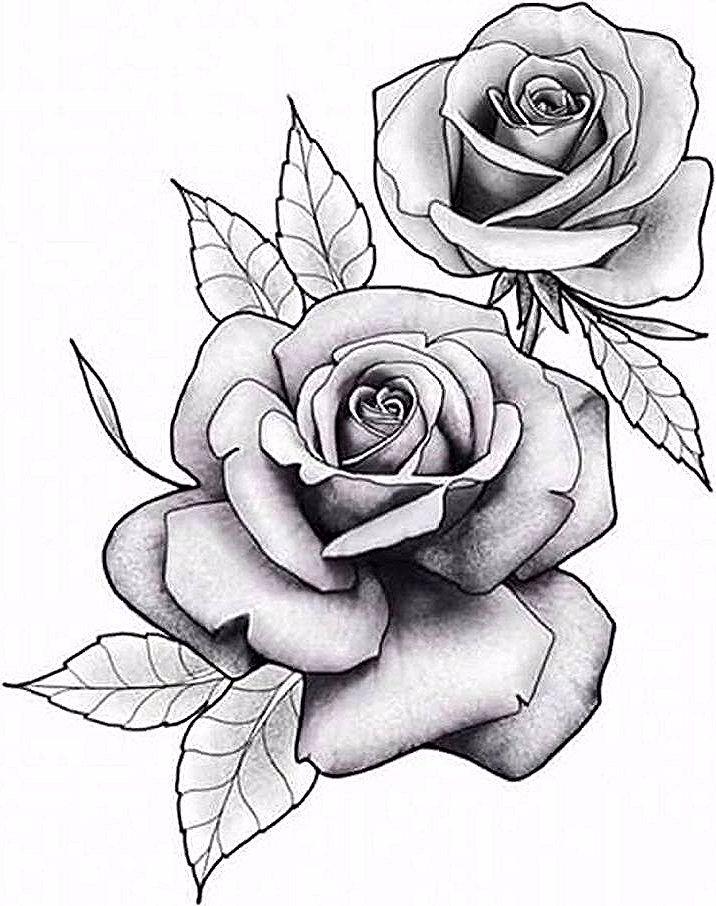 Flores Bg Flores Rosetattoo Tattoo Rose Drawing Tattoo Realistic Rose Tattoo Rose Tattoos