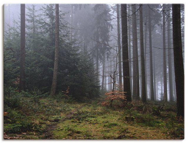 Kunstdruck Poster »H. Wilhelm: Schmaler Pfad führt in nebligen Wald« #naturallandmarks