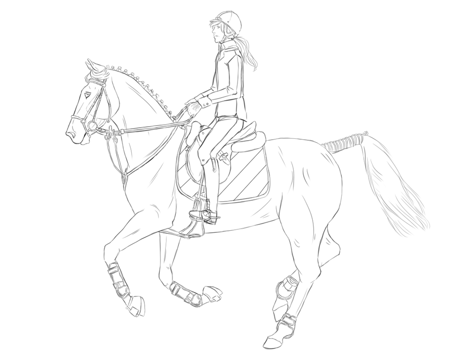 Show Jumping Lineart Horse Drawings Horse Coloring Pages Animal Drawings