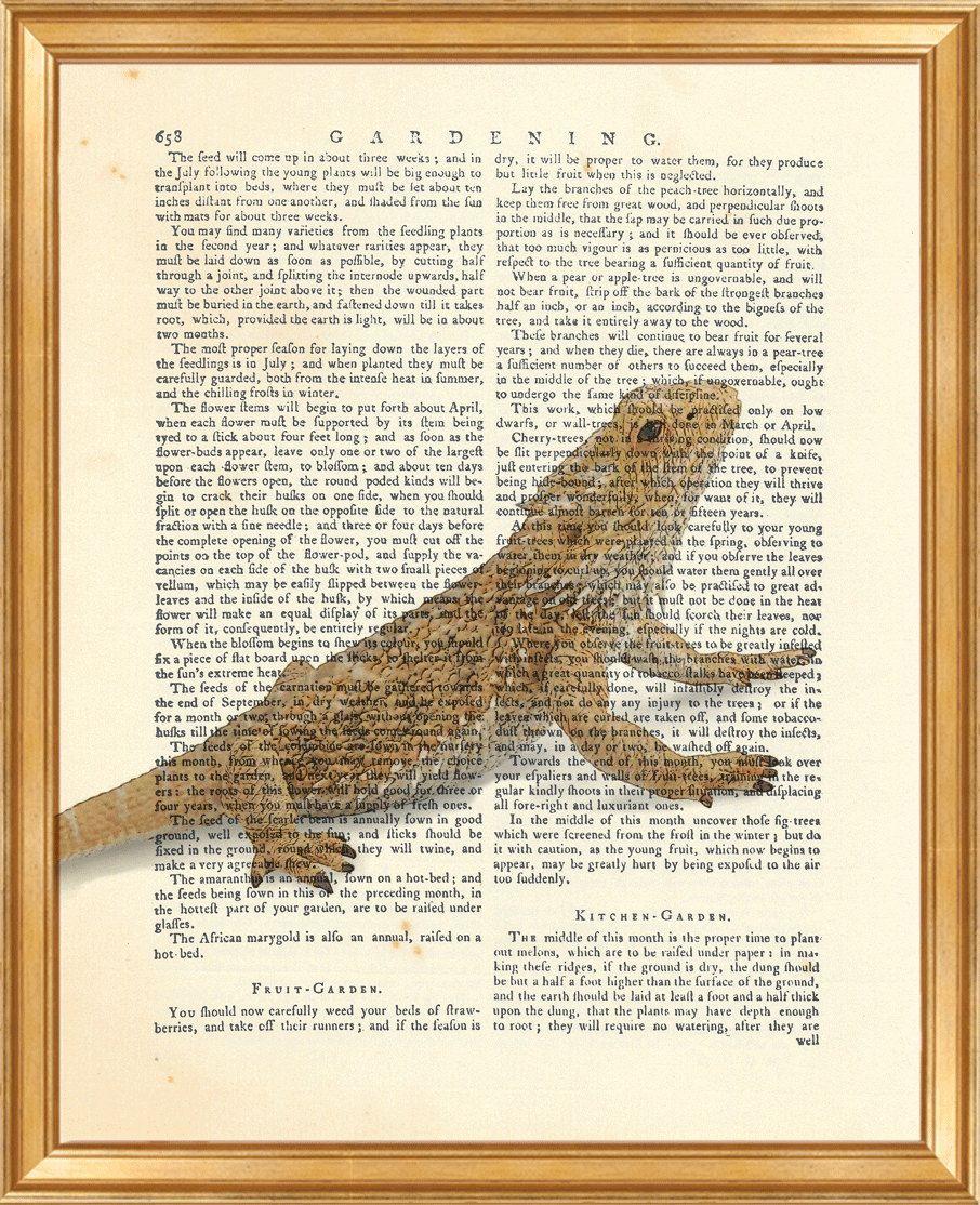 Lizard print lizard wall art lizard dictionary art print lizard