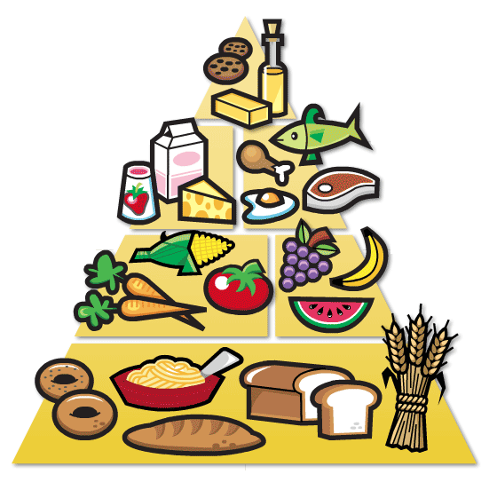 Menta Más Chocolate Recursos Para Educación Infantil Imagen A Color De Rued Pirámide Alimenticia De Los Niños Pirámide De Los Alimentos Alimentos Preescolar