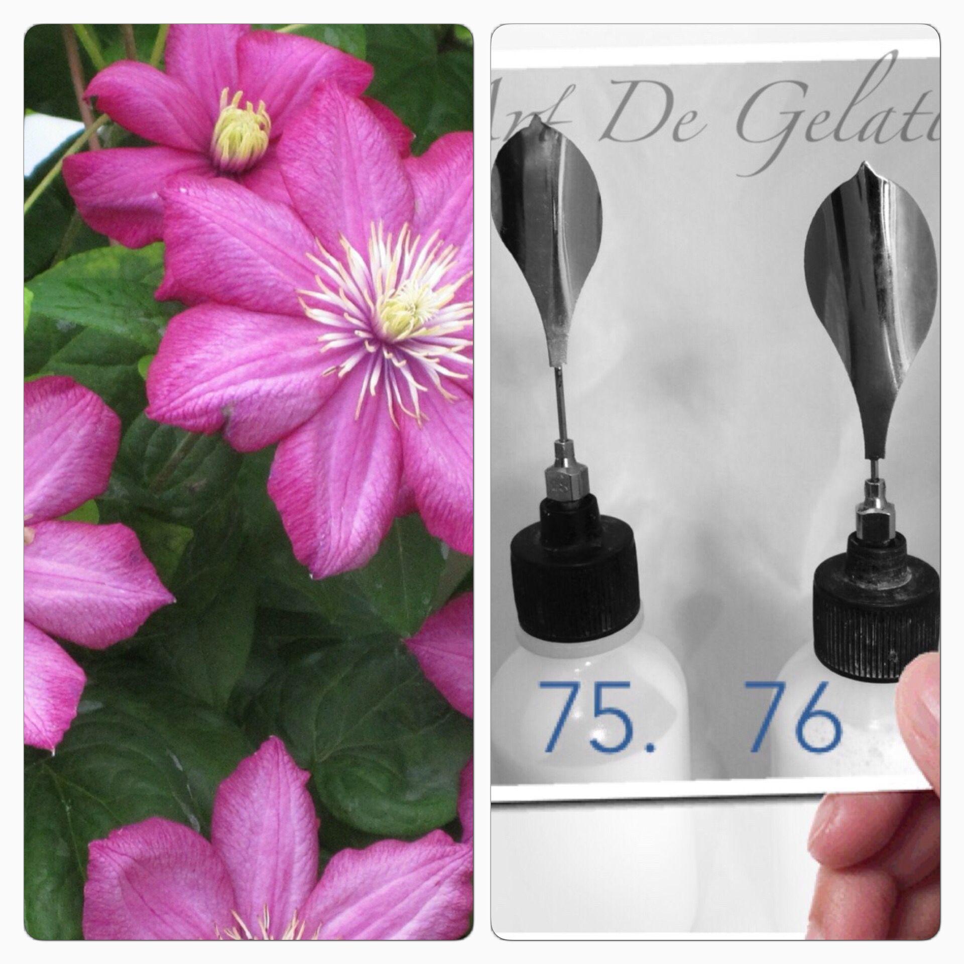 Pin By Art De Gelatin 3d Edible Gelatin Art On Gelatin Art Tools