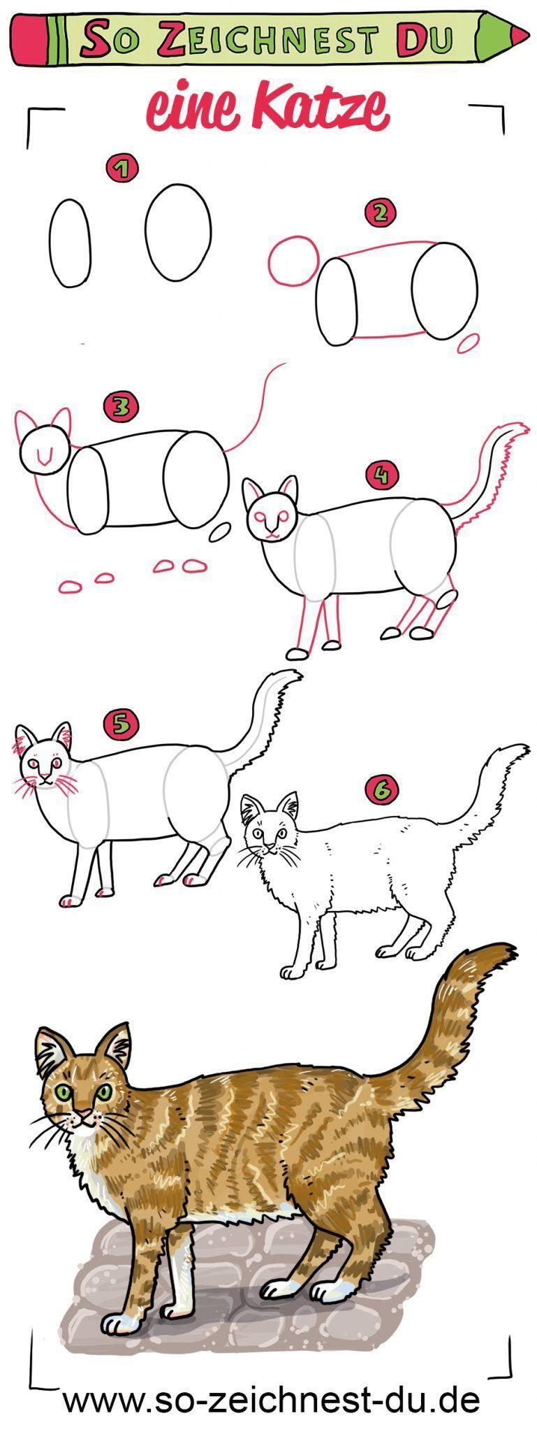 So zeichnest du eine Katze Schritt für Schritt in 2020 ...
