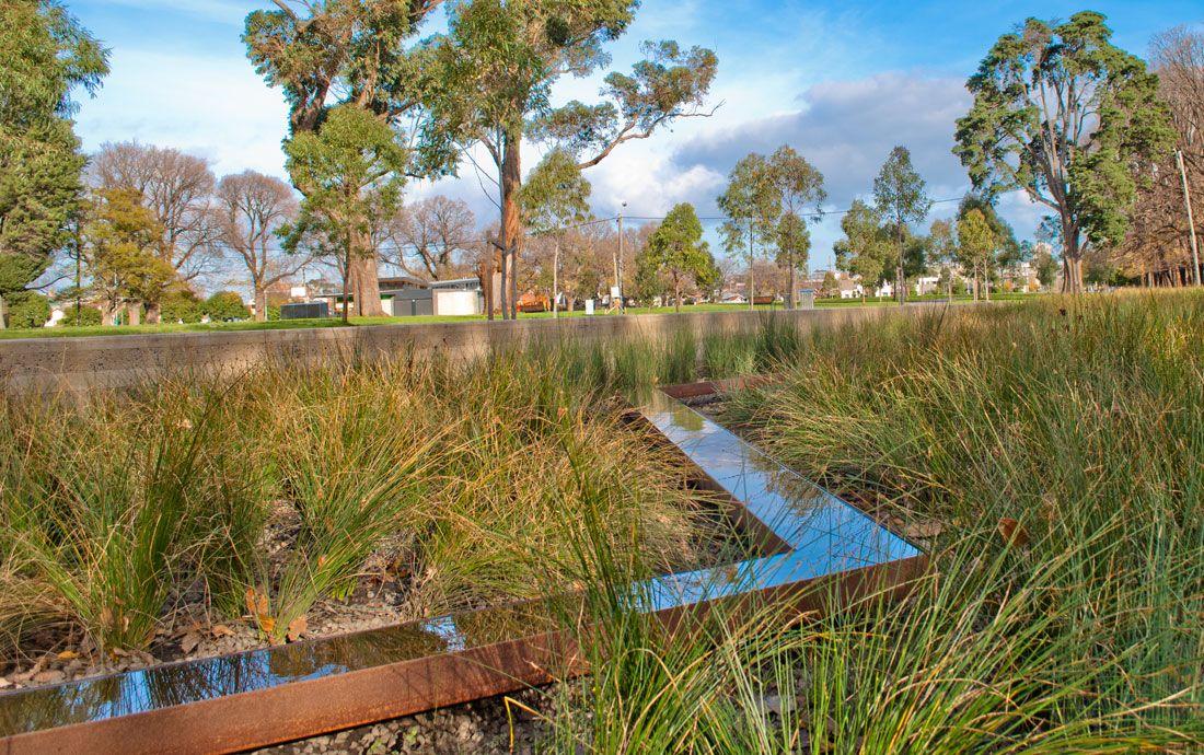The Edinburgh Gardens Rain Garden in Melbourne. | Rain ...