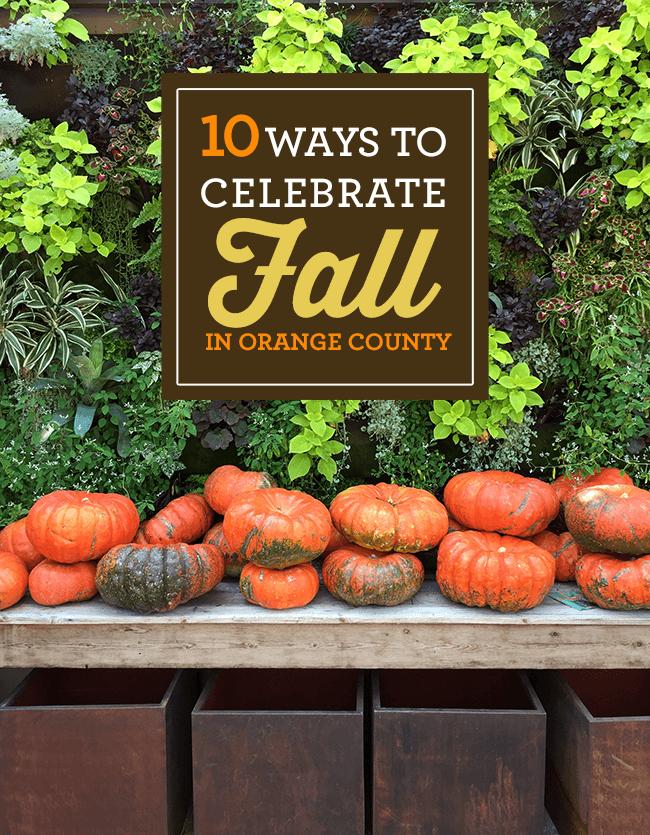 10 Ways To Celebrate Fall In Orange County Popsicle Blog Orange County Orange County Restaurants County