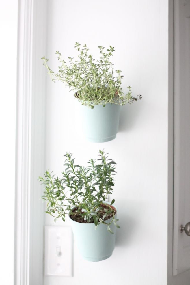 DIY hanging planter tutorial. Perfect for growing your favorite herbs in your kitchen. hanging planter tutorial. Perfect for growing your favorite herbs in your kitchen.