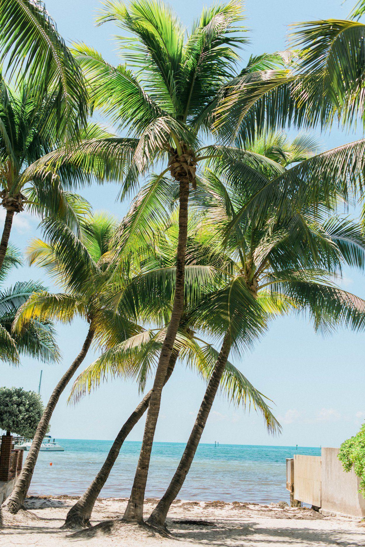 A Key West Bachelorette Weekend Guide Bachelorette