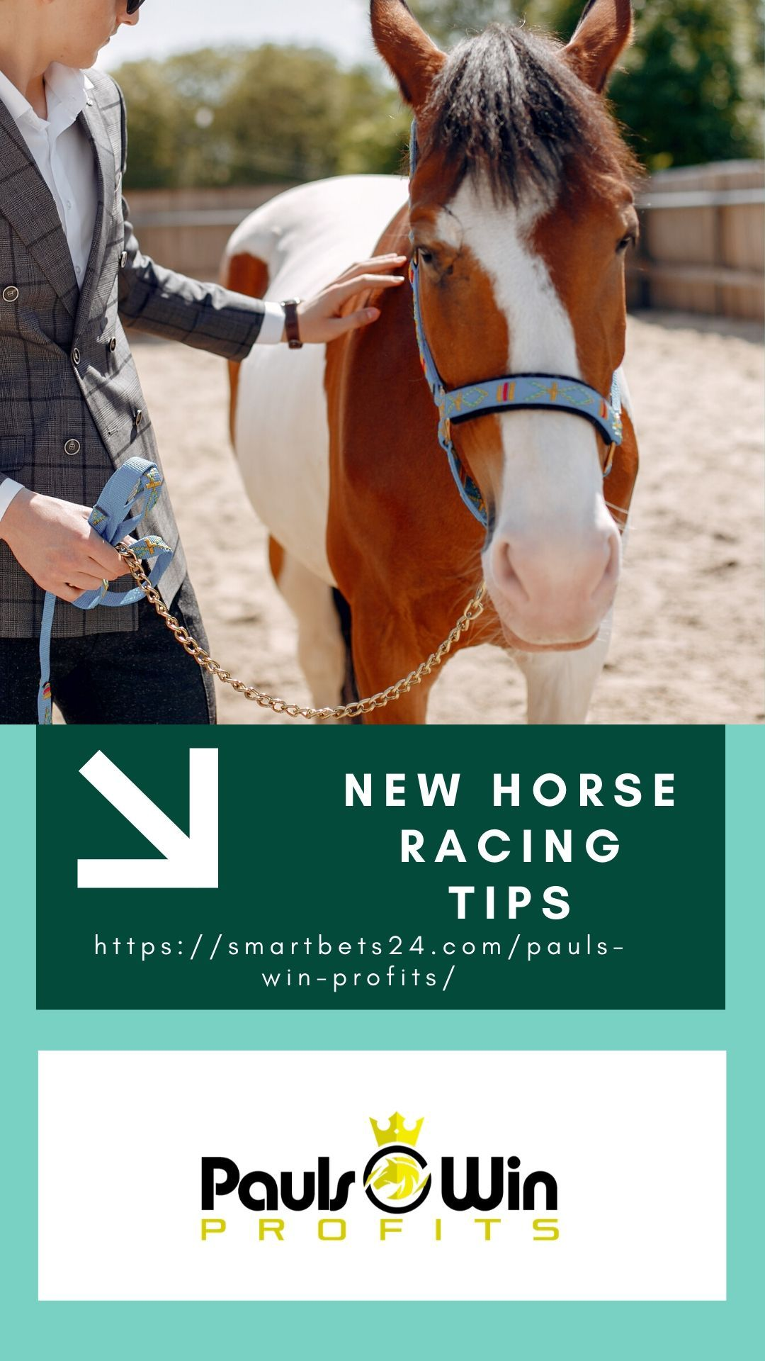 Horse betting for profit mansion sports betting