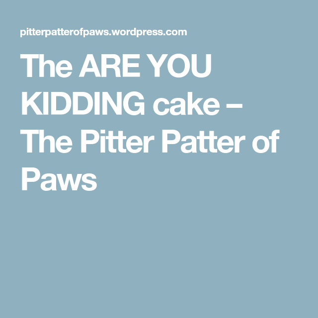 The ARE YOU KIDDING cake – The Pitter Patter of Paws