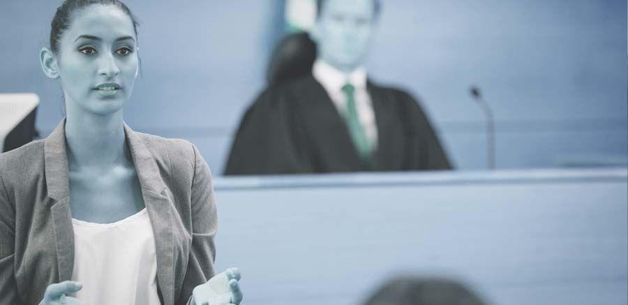 Lawyers professional liability insurance riebling