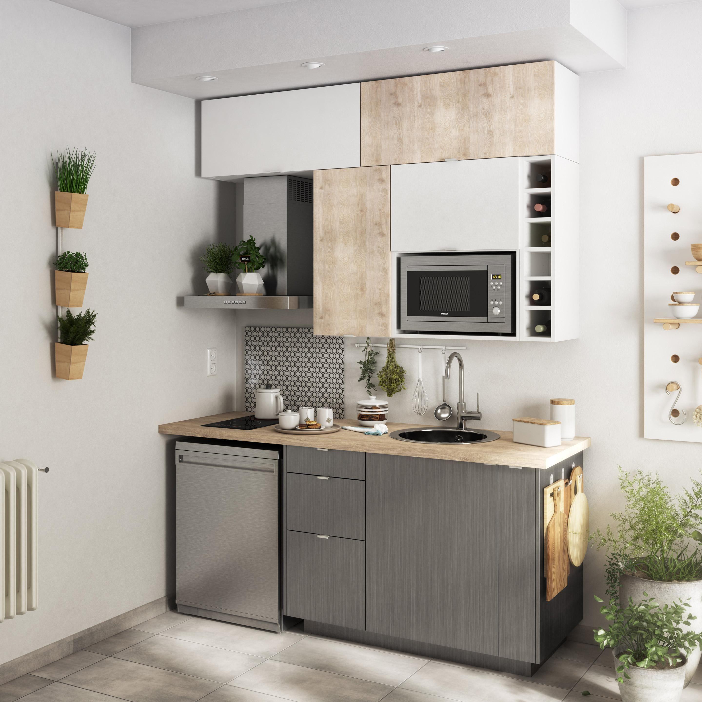 Cuisine Equipee Detroit Delinia Id En 2020 Cuisine Studio Cuisine Appartement Et Amenagement Petite Cuisine