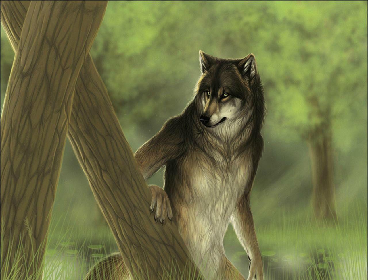 Dark Werewolf  Wallpaper