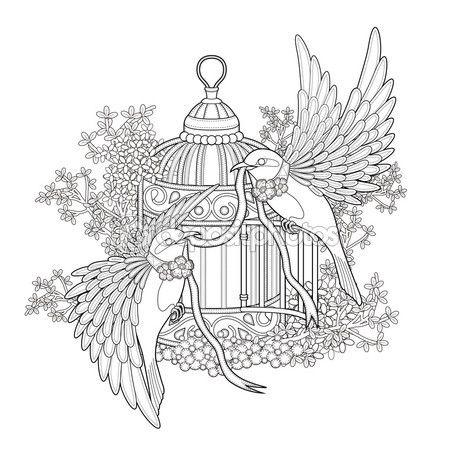 Página para colorear de aves elegantes — Vector de stock | Pajaros ...