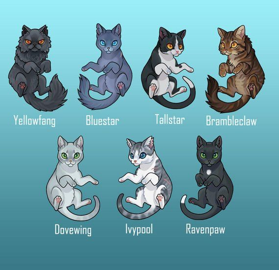 Leaders Of Thunderclan By WoofyDragon Warriors T