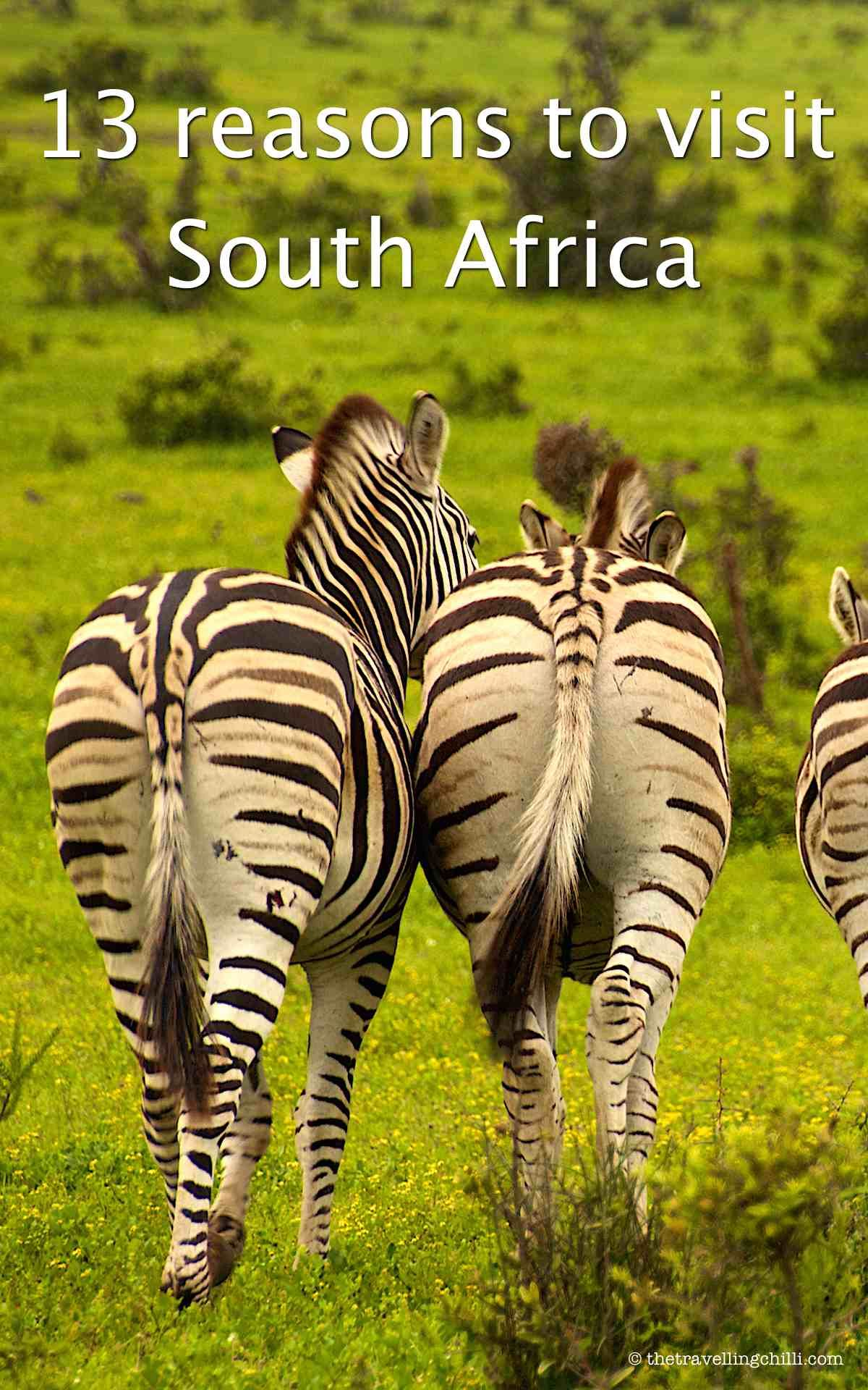 Image result for visit beautiful south africa