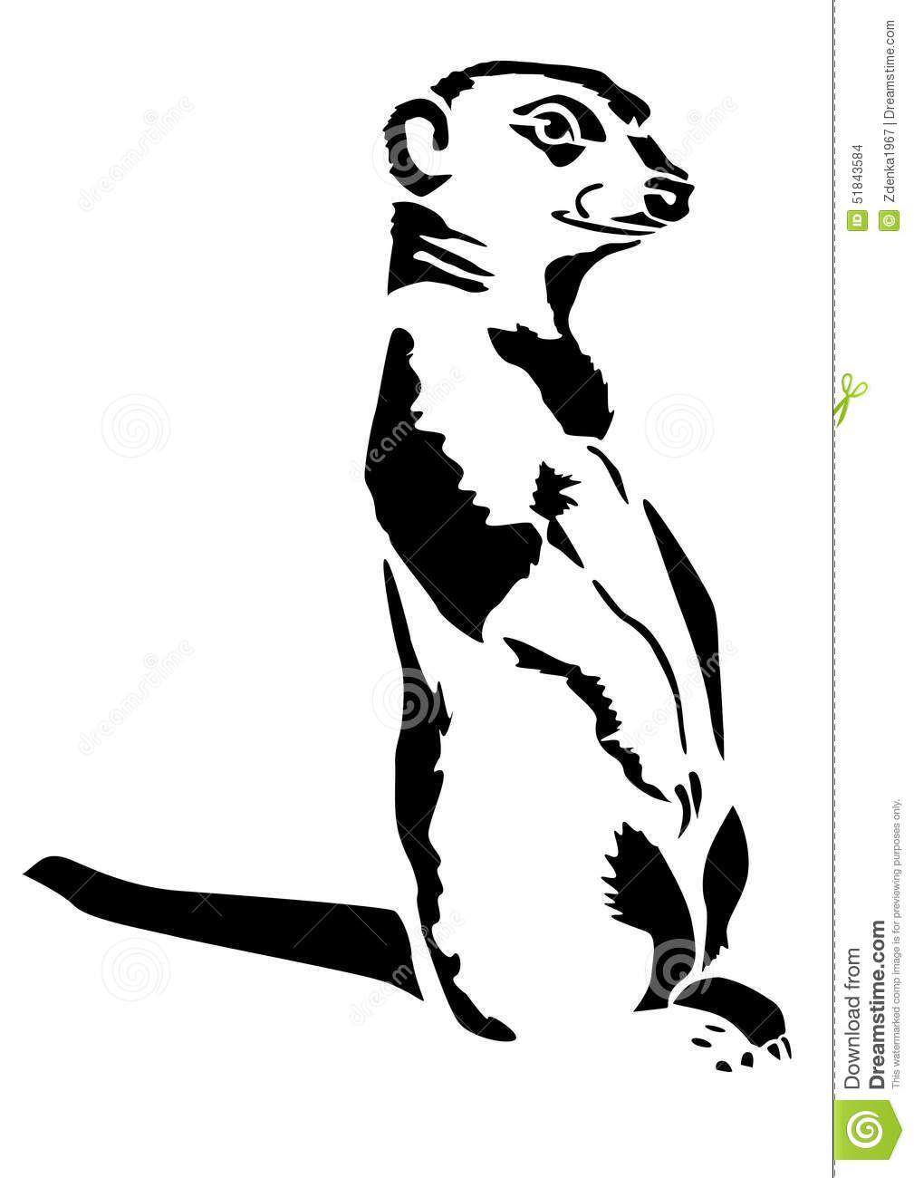 Beast Meerkat Stands Carnivora Meerkat Illustration Black And White Drawing